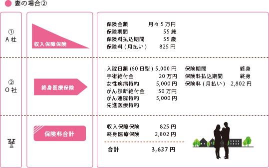 夫婦専業主婦(子供なし②-②)夫:35歳 年収500万円:妻30歳