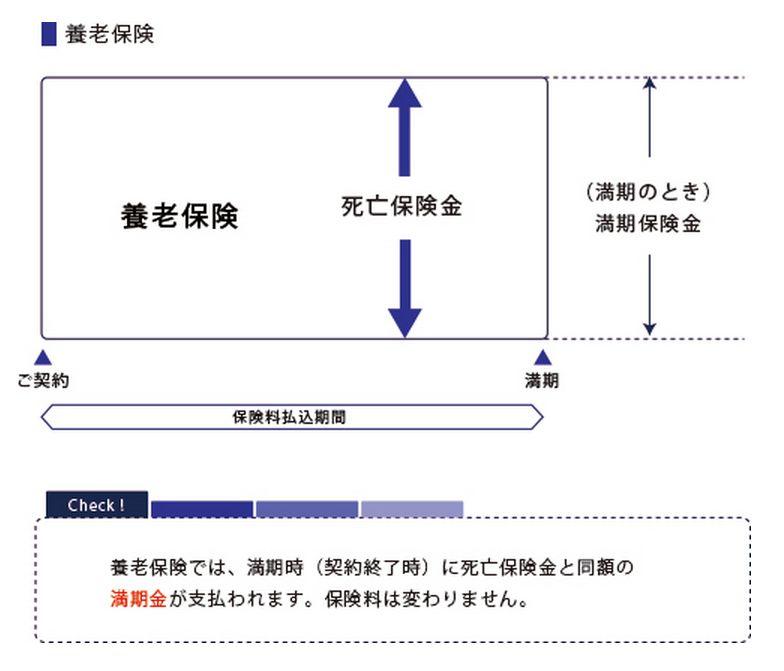 養老保険の図